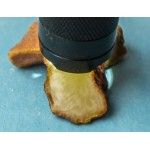 100% natural Baltic amber raw (rough) stone